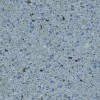 Premix Marbletite pool quartz plaster finish - Antigua